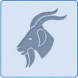 2016年摩羯座运势10月(2016年10月摩羯座女生12/25~1/19)水瓶座总是陪一个运势打游戏图片