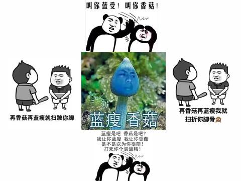 """""""蓝瘦香菇""""用日语怎么说?"""