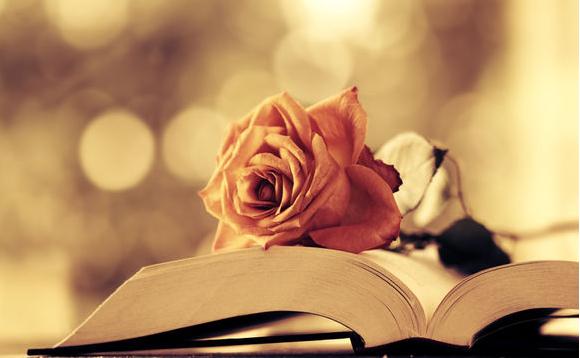 25357 >> 关于读书的英语名言:书是人类进步的阶梯_沪江英语学习网