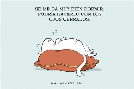 看漫画学西语 给我一张床,可以睡到世界的尽头图片