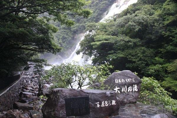 鹿儿岛人气景点推荐:屋久杉园,大川瀑布