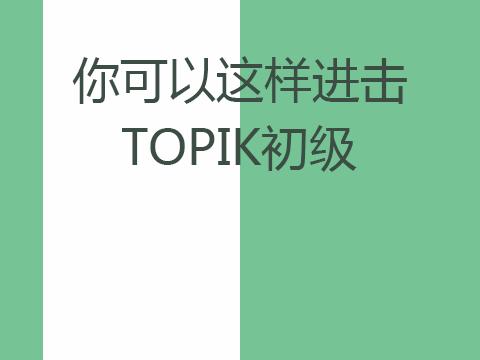 你可以这样进击TOPIK韩语初级