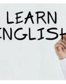 英语每日单词积累