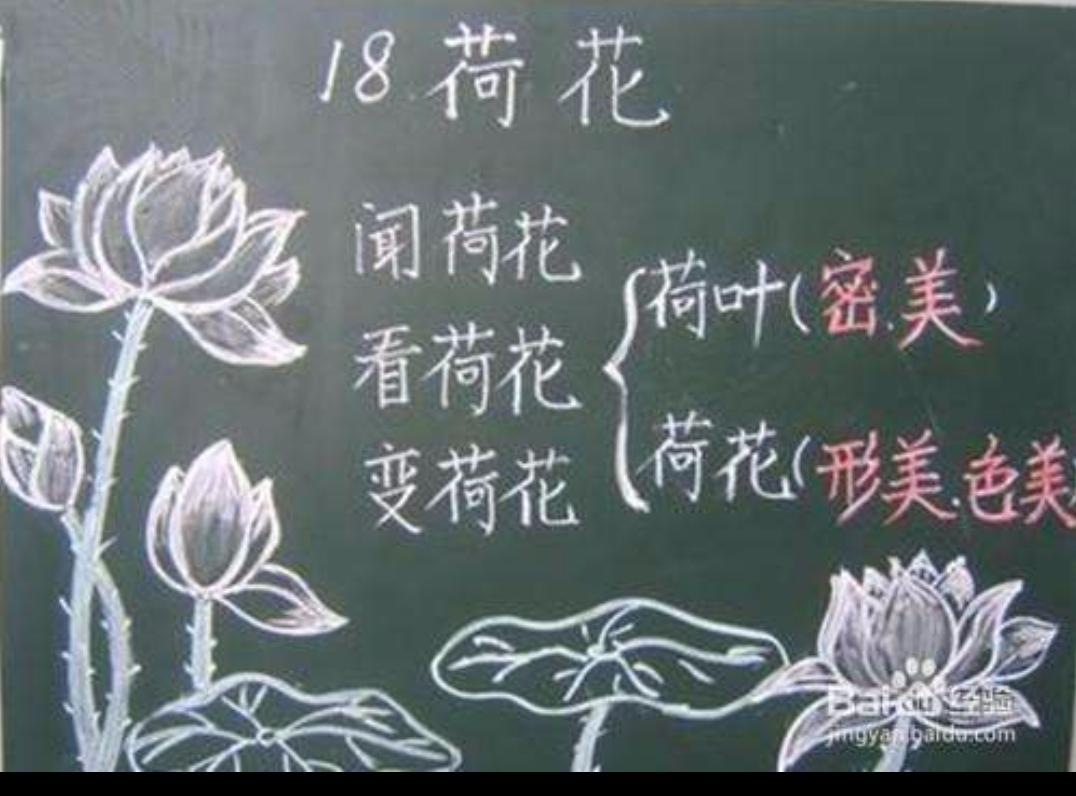 荷花板书设计_乡村青年教师社会支持公益计划