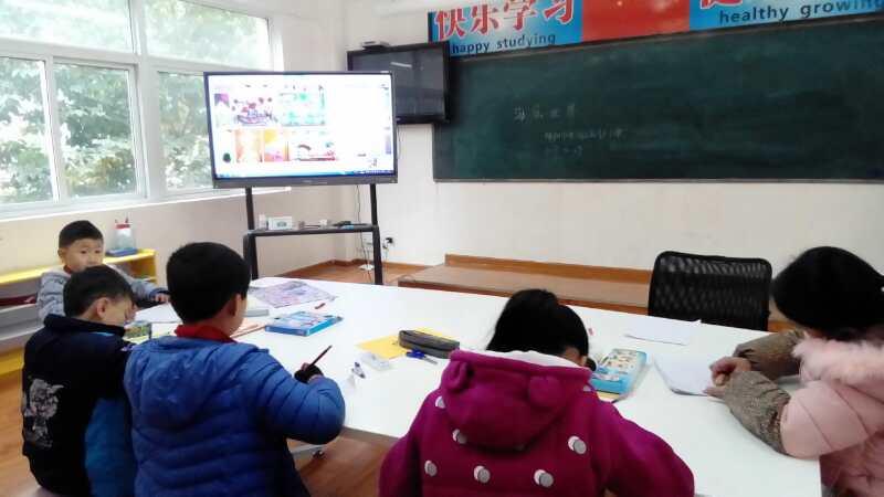 高川乡植物三四年级美术作品《美丽的小学年级世界小学作文五海底图片