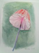 【17年4月新手村】蘑菇