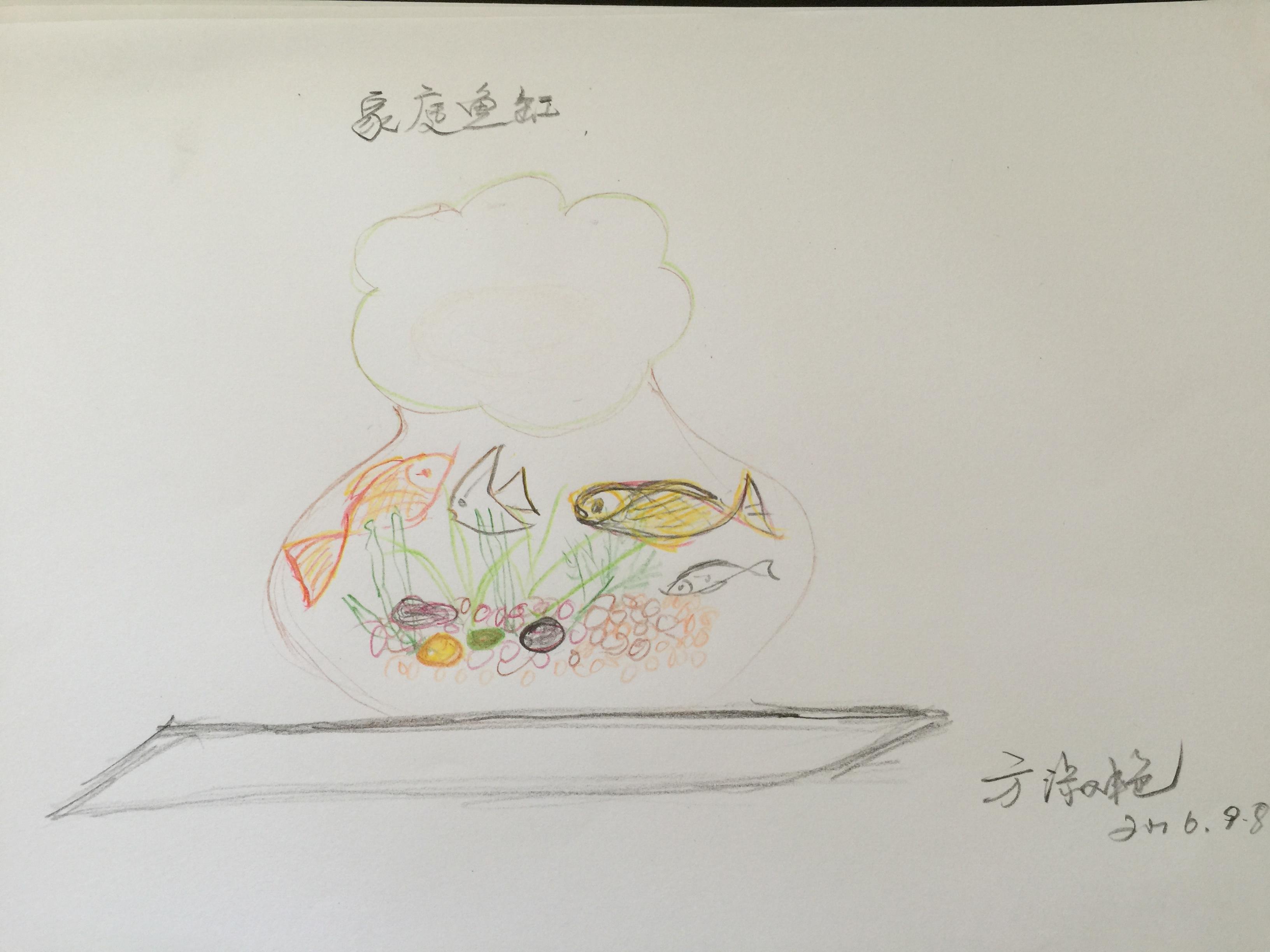 鱼缸里画了水草与石子