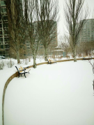 """""""雪""""之感"""