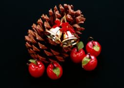 【双语】圣诞之夜