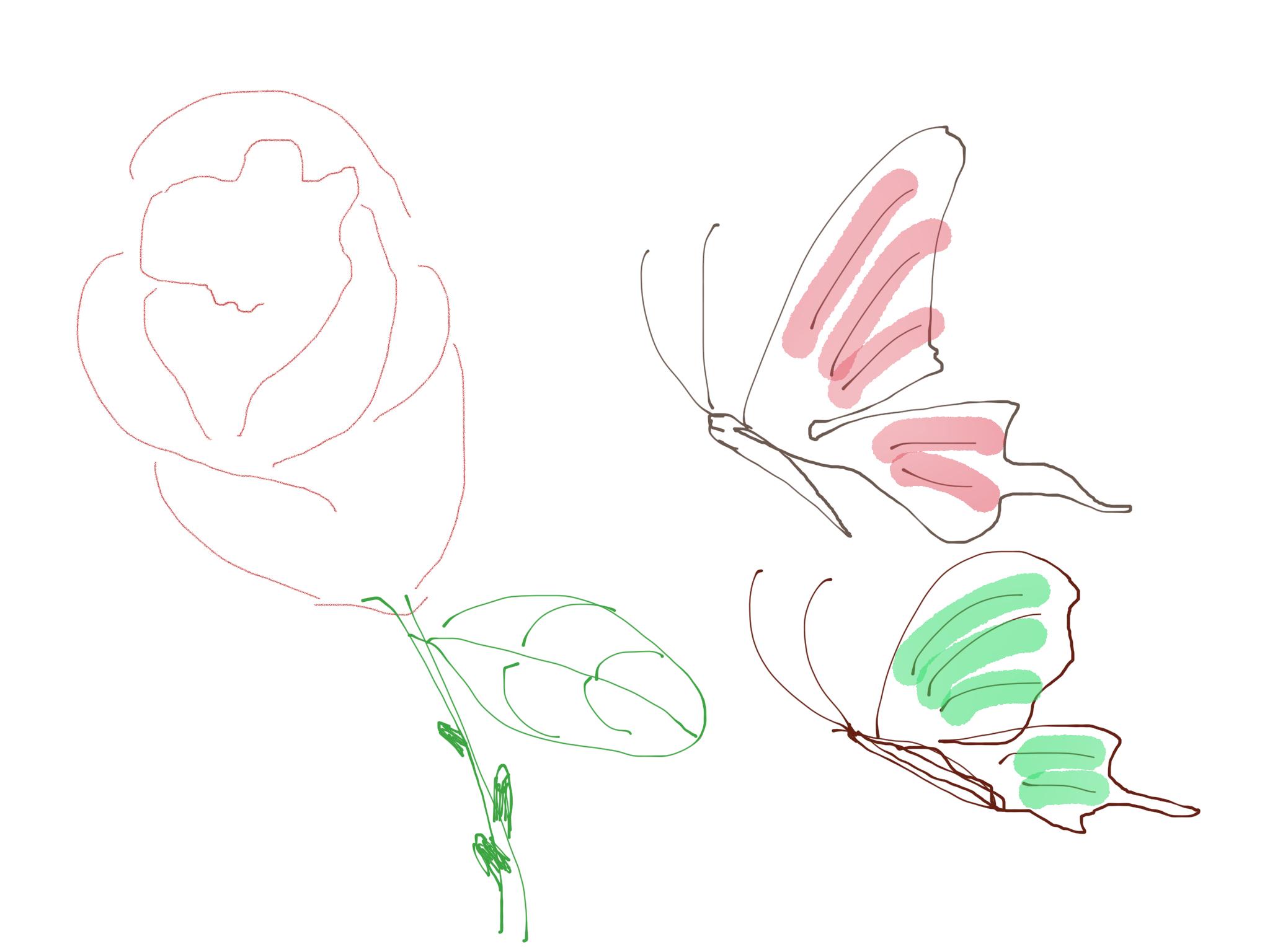 蝴蝶画画大全简单漂亮