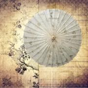 【传统工艺品】 油纸伞