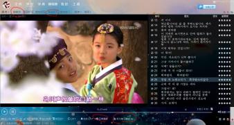 《一枝梅》《对不起我爱你》《浪漫满屋》等十几部经典韩剧韩文字幕分享
