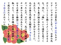 ☀初声早早读☀<1150>十一月の椿①♪binvampire