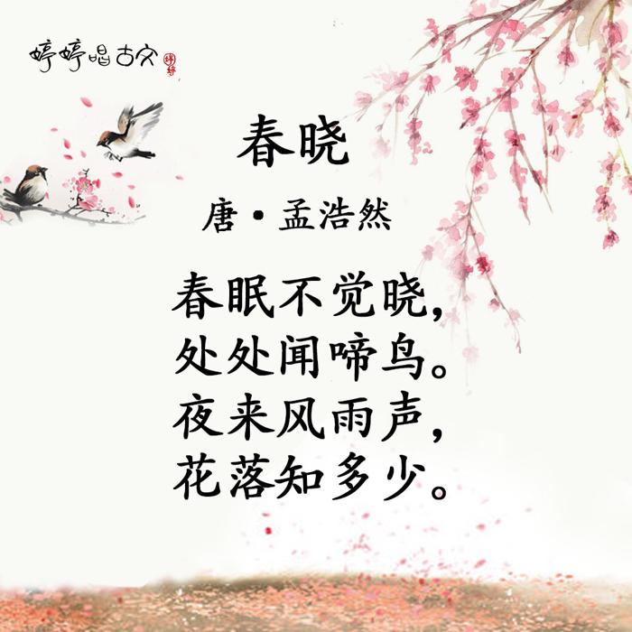 婷婷诗教【春晓】教会孩子珍惜时间 013