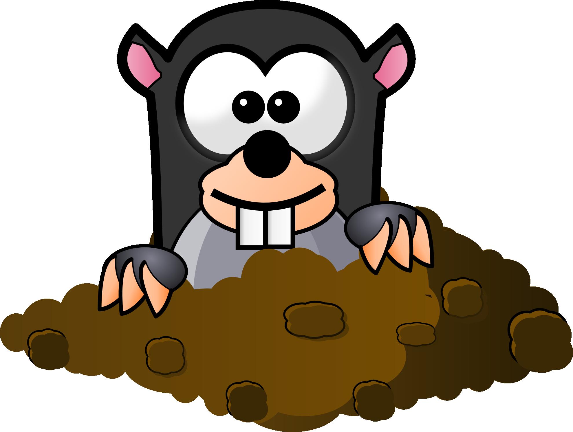 鼹鼠和土拨鼠有什么区别啊图片