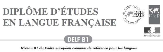 【DELF B1等级考试历年真题】PDF+audio+答案