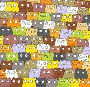找找看:一大堆猫头鹰中间有个叛徒!找找喵咪在哪里!