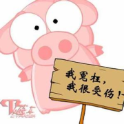 第1721期【韩语每日一词】2017.01.10——상하다