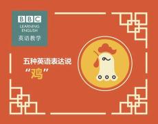 """【新闻纵横】no. 17——五种英语表达说""""鸡"""""""