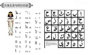 阿拉伯小知识——中东的壮丽与神秘