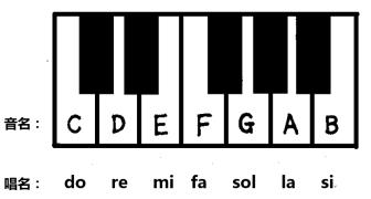 【基础乐理】第2期:基本音级名称与音的分组