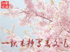 【每日美文抄写】3月20日