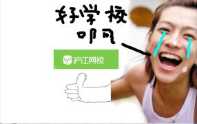 韩国球迷:别坐飞机了,游回韩国吧