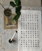 【都来写吧】我的毛笔练字,千字文小楷字帖~(开始)