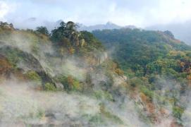 """迎""""中国旅游日"""",天桥沟森林公园推出半价惠民活动"""