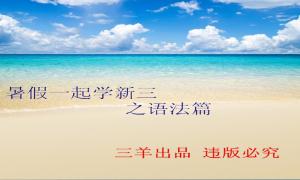 暑假一起学新三 之语法篇