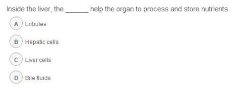 TED-Ed | 肝脏是如何工作的