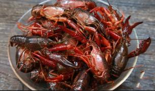 美味香辣小龙虾