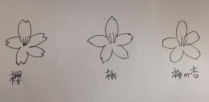 简笔画 手绘 线稿 800_389