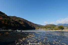 【小然班班旅行团】新年去京都巡礼吧~(多图)