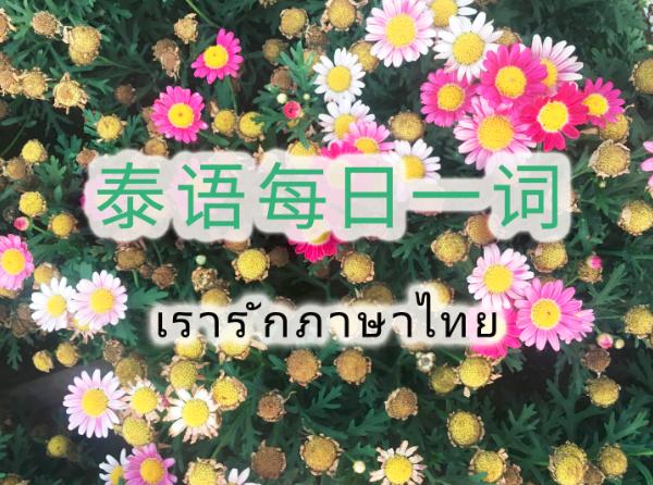 """泰语每日一词:วีซ่า""""签证""""(Day 2000)"""
