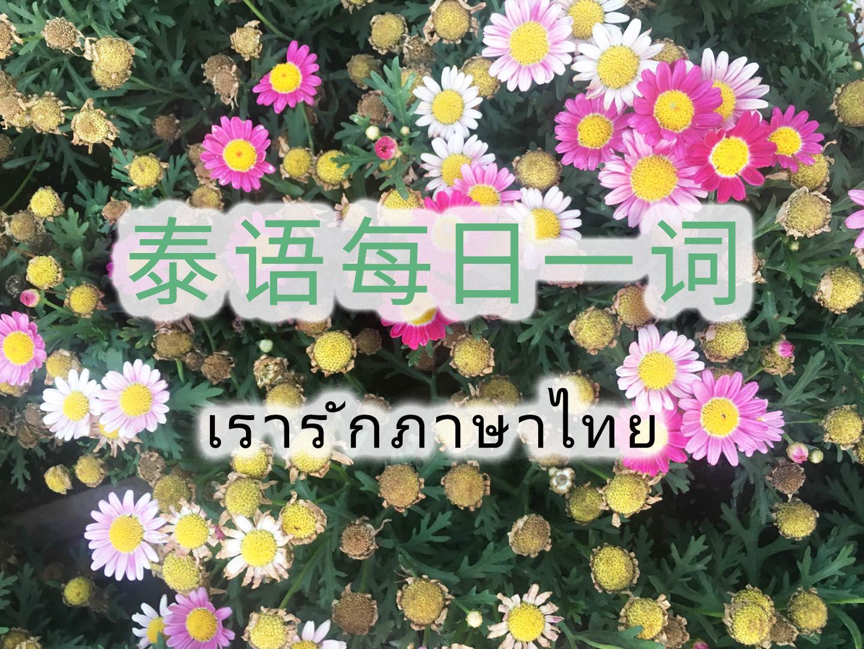 """泰语每日一词:รื้อ""""拆除"""",""""翻""""(Day 1996)"""