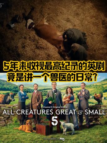 万物生灵:5年收视最高纪录英剧,是讲一兽医的日常?
