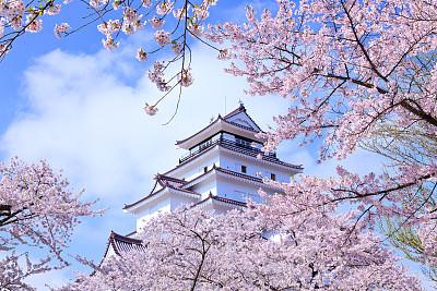 2019US News世界大学排名:日本大学排名