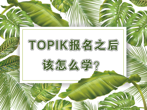一张图告诉你:TOPIK报名之后该怎么学?