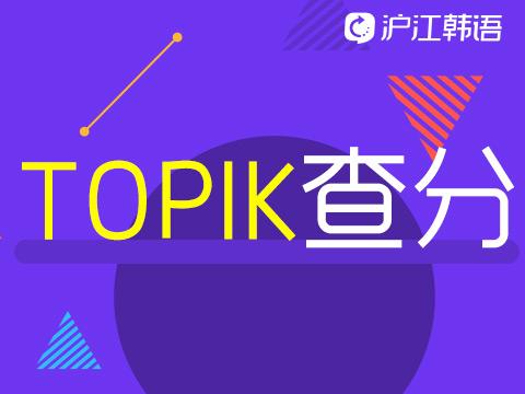 66届TOPIK成绩查询入口韩语能力考试查分方法