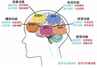 记忆力训练(超强学习班)