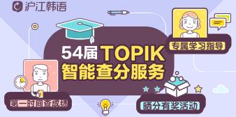 54届TOPIK智能查分,第一时间收到成绩!