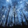 乱七杂八:银河交友