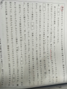N1蓝宝书第十页的短文阅读