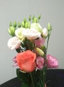 비가 와도 꽃을 샀다.