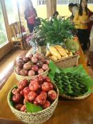 【资讯】好吃好玩在龙州主题活动安民平给生态园