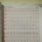1.6曹子园1.14曹子奥书写14天
