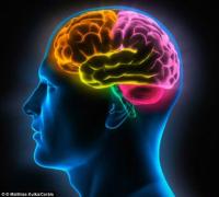 【测试】测测你的大脑灵活指数