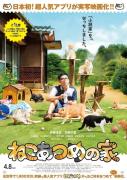 【小然班班独家推荐】资源·猫咪后院之家