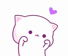 哈喽cat